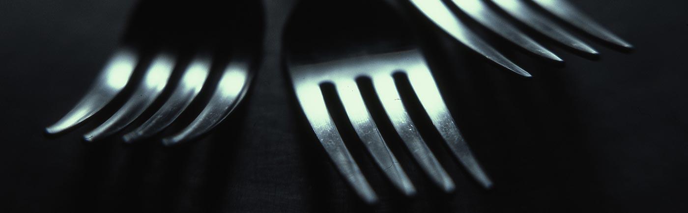 slider_forks